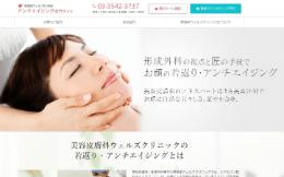 東銀座ウェルズクリニック(サイトイメージ)